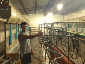 Carlos and his milking machines